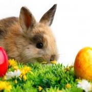 Zografos-Happy-Easter